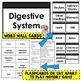 Digestive System- Quiz and Flashcards