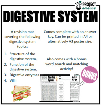 Digestive System Revision Mat