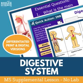 Digestive System - Supplemental Lesson - No Lab