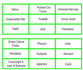 Digestive System Thinking Bingo (PDF)