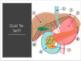 Digestive System Unit Notes