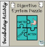 Digestive System Vocabulary Puzzle