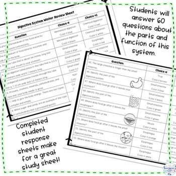 Digestive System Winter Color by Number Editable Review Activity