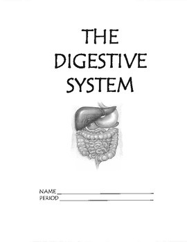 Digestive System Work/Packet