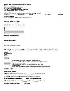 Digestive System Worksheet 2