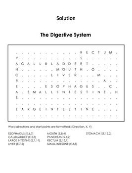 Human Body Systems Word Search: Digestive System Worksheet