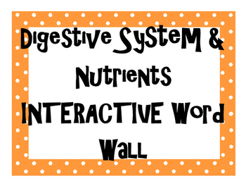 Digestive System and Nutrition INTERACTIVE Word Wall