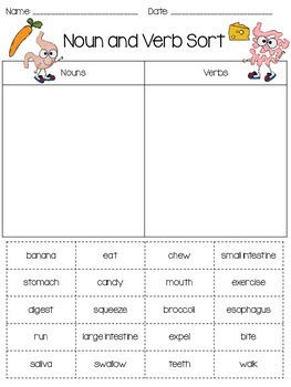 Digestive System and Nutrition Noun and Verb Sort
