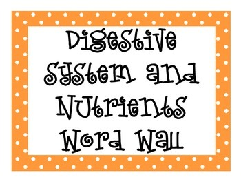 Digestive System and Nutrition Word Wall