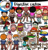 Digestive System clip art