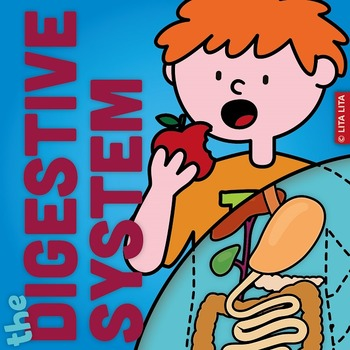 Digestive System fold and learn