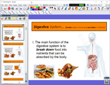 Digestive & Urinary Systems Bundle - Flipchart, Guided Notes, CLOZE, Quiz