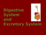 Digestive System and Excretory System PowerPoint