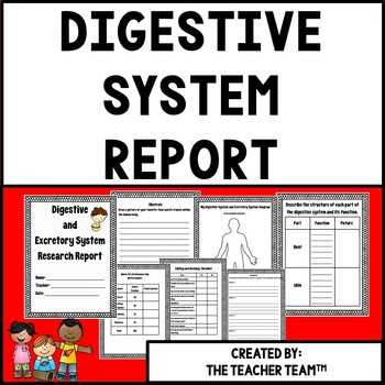 Digestive System of the Human Body Research Report