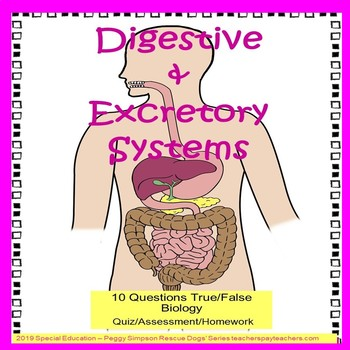 Digestive and Excretory Systems Quiz/Assess/Homework SPED/Autism/ELL