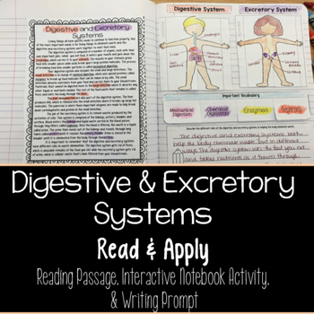 Digestive and Excretory Systems Reading Comprehension Interactive Notebook