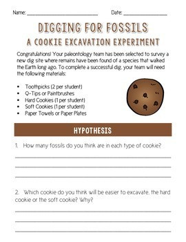 Digging For Fossils - A Cookie Excavation Experiment