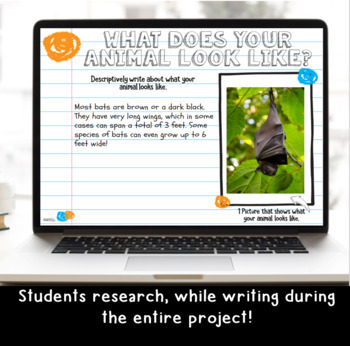 Digital Animal Research Project for Grades 3-5: For Use w/ Google Classroom