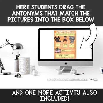 Digital Antonym Activities for Google Drive