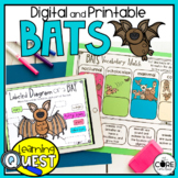 Digital Bat Activities   Fall Activities for October   Dis
