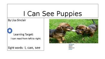 Digital Book:   Kindergarten Level A
