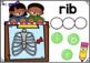 Digital Boom Cards Spelling CVC Words Set 5 with Ii Word Families