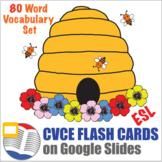 Digital CVCE Word Flash Cards