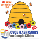 Digital CVCE Word Flash Cards