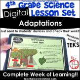 Digital Complete Lesson Set- 4th Grade Adaptations DISTANC
