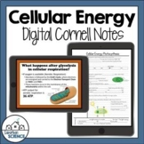 Digital Cornell Notes for Biology- Photosynthesis and Cell