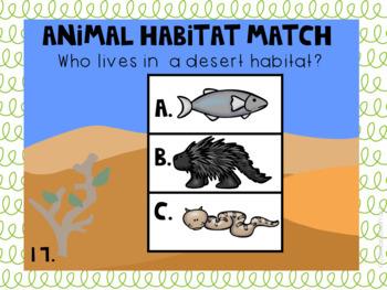 Digital Habitat Pack and Review