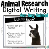 Digital Writing: Animal Research Google Classroom Writing