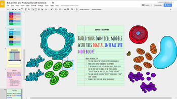 Digital Interactive Notebook Cell Organelles Prokaryotic & Eukaryotic Cells