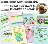 NEW Digital Interactive Notebook Insect Unit and Life Cycle of a Butterfly