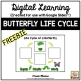 Digital Learning-BUTTERFLY LIFE CYCLE for Distance Learnin