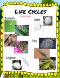 Digital Life Cycle Activities for Google Docs