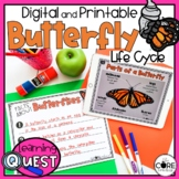 Butterfly Life Cycle Activities   All About Butterflies   Printable & Digital