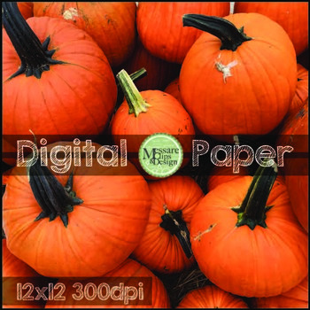 Digital Paper Fall Themed Photos and Backgrounds {Messare Clips and Design}