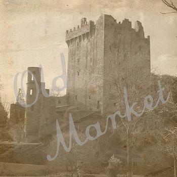 Digital Paper Pack - Vintage Castle Images - 16 Different Papers - 12inx12in