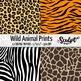 Animal Prints ~ Zebra, Tiger, Leopard, Giraffe