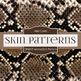 Digital Papers - Animal Skin Prints Pattern (DP4017)