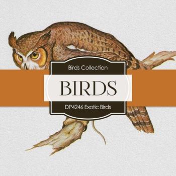 Digital Papers - Exotic Birds (DP4246)