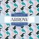 Digital Papers - Follow The Arrow (DP1738)