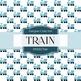 Digital Papers - Train (DP2325)