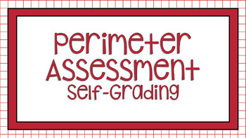 Digital Perimeter Review and Assessment for Google