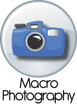 Digital Photo: Macro Photography Lesson