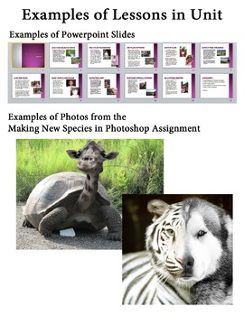 Digital Photo: Making New Species in PhotoShop