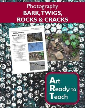 Digital Photography Lesson - Nature - BARK, TWIGS, ROCKS & CRACKS