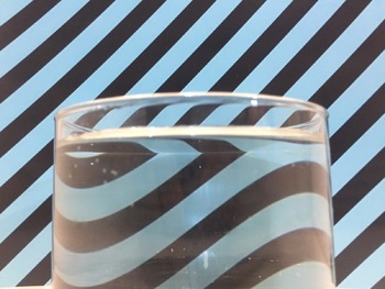 Digital Photography Lesson - REFRACTION IN WATER - Directions & Samples