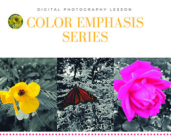 Digital Photography Project- Color Emphasis Series Lesson